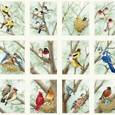 "Elizabeth's Studio Beautiful Birds Songbirds Quilt Fabric 24"" x 44"" Panel"