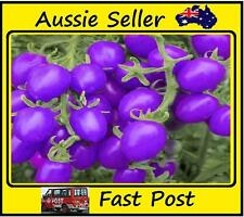 100Pcs Purple Cherry Tomatoes Seeds Vegetables Potted Plant Tomato Seeds