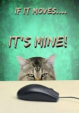 MAGNET Animals Funny Cat Staring Mouse IF IT MOVES IT'S MINE