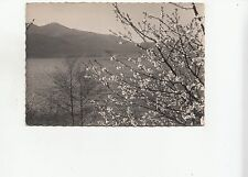 BF26627 lac du bourget savoie printemps   france  front/back image