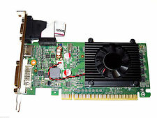 1GB GeForce PCI Express PCI-E x16 Dual Monitor Display View Video Graphics Card