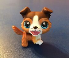 LITTLEST PET SHOP #237 Brown Collie Blue Eyes Open Mouth Dog with hat 2006 Rare