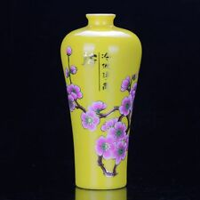 Chinese Colourful Porcelain Hand Painted Plum Vase D92