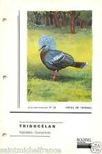 Goura couronné Goura cristata - Western Crowned Pigeon FICHE CARD 1955 50s