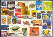 SEA SHELLS & MARINE LIFE-50-Different Large Used World wide Foreign Stamps
