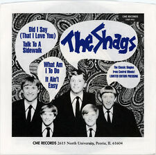 "THE SHAGS  ""WHAT AM I TO DO / IT AIN'T EASY""  MIDWEST FOLK ROCK  EP   LISTEN!"