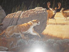 CAUSE FOR ALARM  BY TOM MANSANAREZ  MOUNTAIN LION AND DEER PRINT