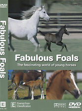 Grainger's World-Fabulous Foals:World of Young Horses-2009-TV Show USA-DVD
