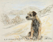 BORDER TERRIER DOG FINE ART LIMITED EDITION PRINT - On the Hillside