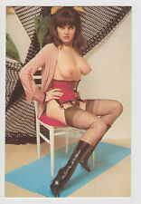 Postcard Nude Sexy Girl Topless Breast Pinup Lingerie Stunning Post Card #1016