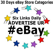 Promote eBay Store Categories 6 Links 30 Days Advertising Campaign Marketing