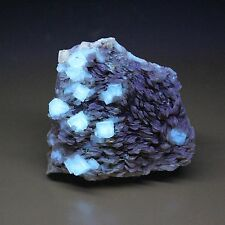 FLUORITE on BARITE,  from DANVILLE,  KENTUCKY, SHARP AND GEMMY CRYSTALS!!  #2771