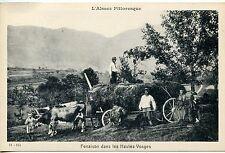 CARTE POSTALE / L'ALSACE PITTORESQUE FENAISON DANS LES HAUTES VOSGES