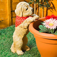 Peeping Puppy Garden Ornament Dog Decoration Plant Pot Outdoor Weatherproof