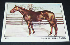 N°133 CHEVAL PUR SANG PANINI 1970 TOUS LES ANIMAUX EDITIONS DE LA TOUR