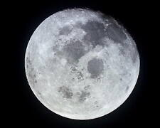 FULL MOON PHOTOGRAPHED FROM APOLLO 11 8x10 PHOTO
