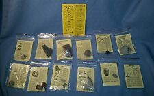 12 Fossils; Educational Kit; Great for the Little Archeologist!