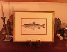 Custom Framed RARE Original 1902 Antique TAHOE TROUT Sherman F Denton Fish Print