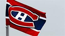 NHL Hockey Montreal Canadiens HABS 2 Sided Car Flag Brand New
