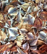 High grade 100 g. Pack Thai Dried Seafood Yellow Fish Clean Fresh Summer Snack