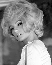 8x10 Print Virna Lisi Sexy 1960's Italian Actress Beauty #5502743