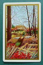 VINTAGE SWAP CARD. PHEASANT IN WOODS. c1940s GILT EDGE ARRCO.  MINT COND.