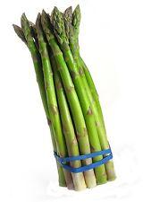 Asparagus Asparagus officinalis 100 seeds * Non GMO * ez grow *#1E26#