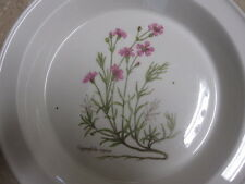 Portmeirion Pottery - Stoke on Trent -England - Gypsophila repens Pie Plate PRT7