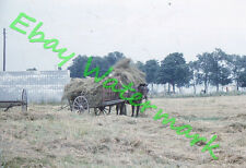 Old Farmer and Young Guy Stacking Hay NW of Quebec Canada 1959 Kodak 35mm Slide