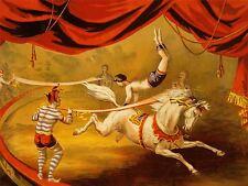 Publicité Exposition De Cirque Bannière loi Acrobat cheval clown chapiteau d'impression lv611