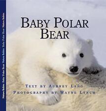 Baby Polar Bear (Nature Babies)