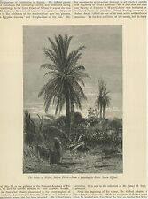 ANTIQUE PALMS PALM TREES OF BISKRA SAHARA DESERT ROBERT SWAIN GIFFORD ART PRINT