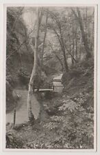 Isle of Wight postcard - In the Chine, Shanklin - RP - P/U 1952