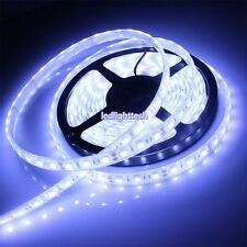 5M 5050 SMD 300 Cool White  LED Strip Light Waterproof IP68 underwater lamp 12V