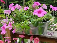 Rustic Country Oval Galvanized Tub Flower Herb Garden Planter w/ Ring Handles