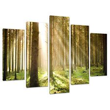 Set of Five Green Canvas Art Wall Pictures Trees Landscape Print 5042