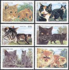 Congo 1999 Domestic Cats/Pets/Animals/Nature 6v set (s1773)