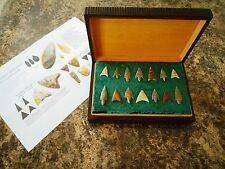 14 x Quality Neolithic Arrowheads in Antique / Wooden Box - 4000BC (0029)