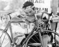 Bernhardiner Hinault Tour de France Fahrrad Legende BW #3 10x8 Foto