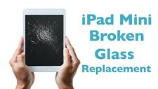 iPad Mini 1 & 2 Broken Glass Screen Repair Service FAST SHIPPING