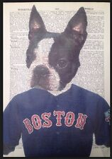 Boston Terrier STAMPA VINTAGE dizionario pagina WALL ART PICTURE DOG RED SOX