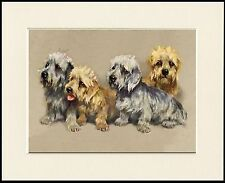 DANDIE DINMONT TERRIER GROUP OF DOGS LOVELY DOG PRINT MOUNTED READY TO FRAME