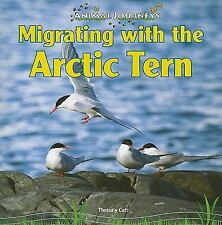 Migrating With the Arctic Tern (Animal Journeys)