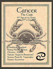 CANCER the Crab Zodiac Astrology Sun Sign 8 1/2 x 11 Page Poster Art