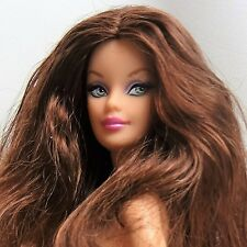Barbie Doll Model Muse Brunette Green / Blue eyes Pink lipstick Nude