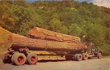 THESE LITTLE LOGS GO TO MARKET~TRUCK LOADED WITH LOGS POSTCARD 1960s