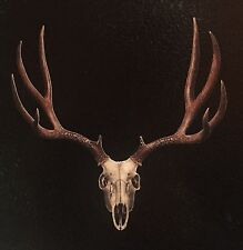 Hunting Stickers Deer Skull Vinyl Decal Truck Car Window Buck Hunter color camo