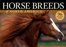 Horse Breeds of North America by Judith Dutson (2006, Paperback)