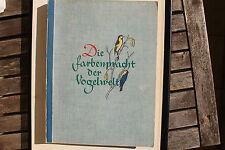 23371 Sammel Bilder Album Farbenpracht der Vogelwelt 1939 Vögel 250 cards birds