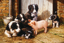 PIGGY IN THE MIDDLE    200 pc Puzzle    Farm Barn Dogs Puppy Country     SunsOut